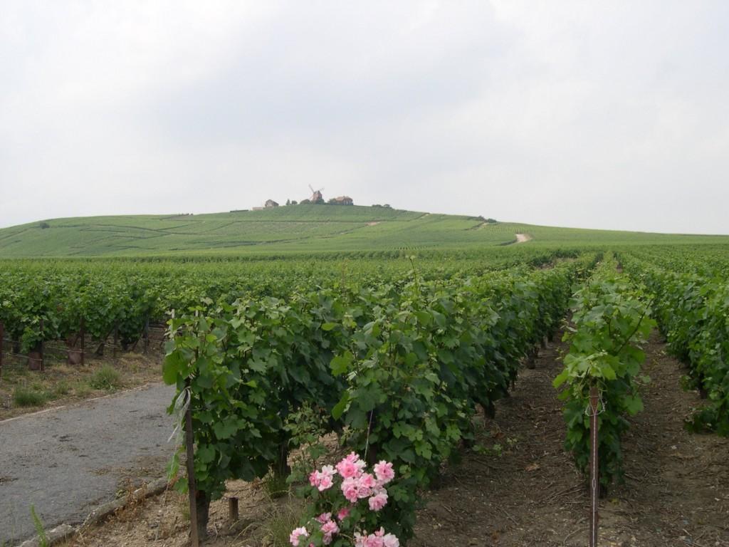Les Voies de Reims